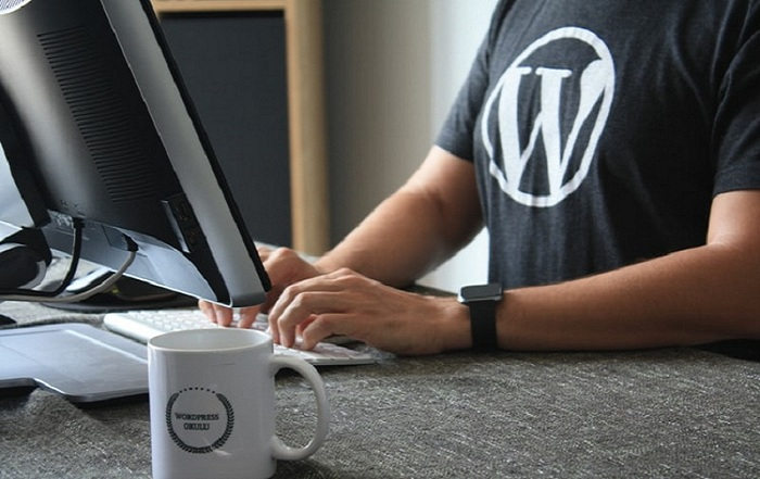lightweight wordpress themes