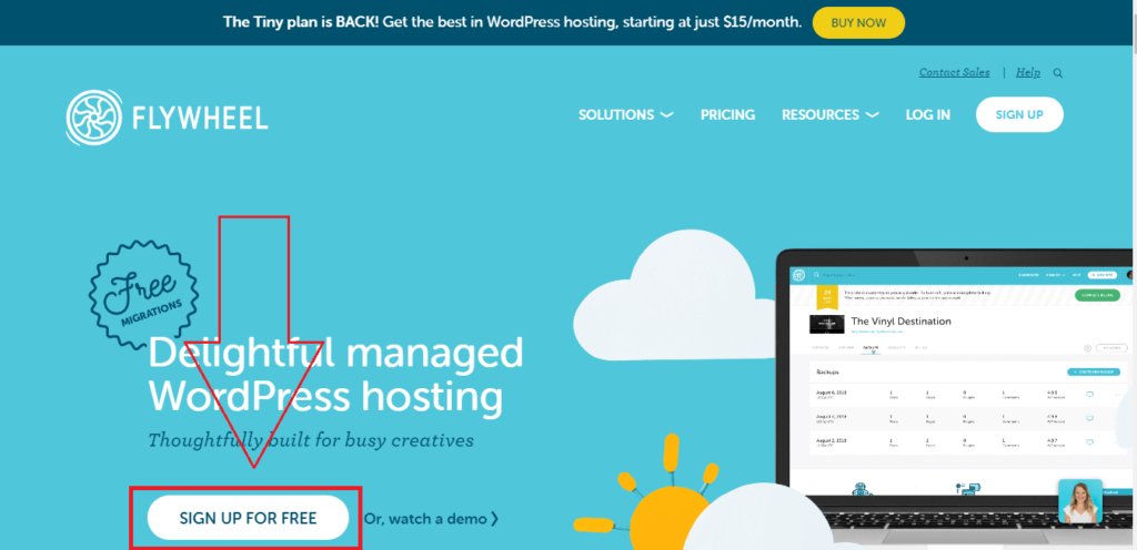 flywheel a managed wordpress hosting company